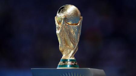 world-cup-trophy-format-wilson